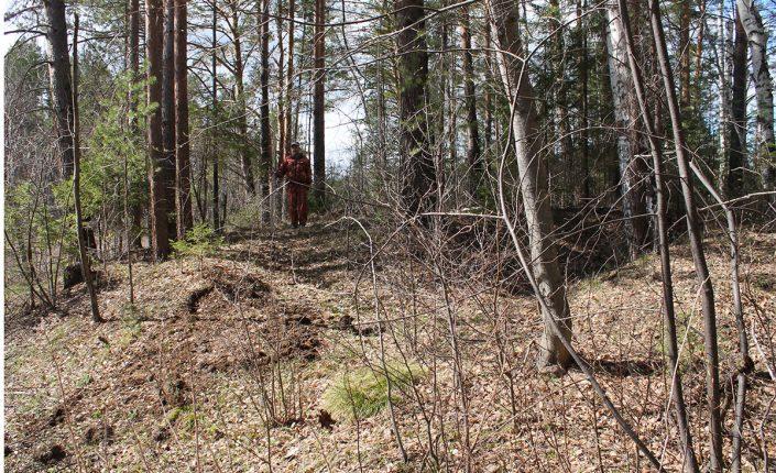В Свердловской области нашли древнее поселение X-IV веков до нашей эры